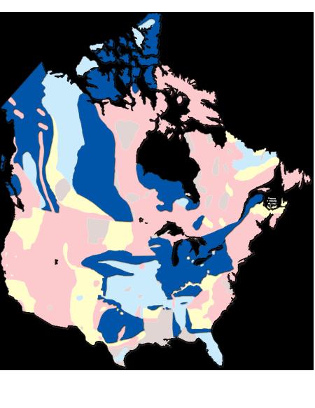 Medium Map Layer